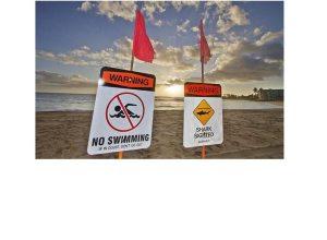 Shark attacks tourist on island of Kauai in Hawaii