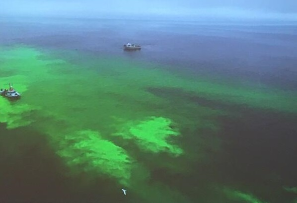 Oil Spill in Hawaii:This is Just a Test!