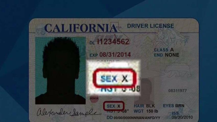 State ID Gender Neutral Option Starting July 1