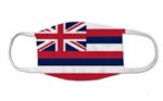 Hawaii Driver Licensing Employee Contracts COVID-19