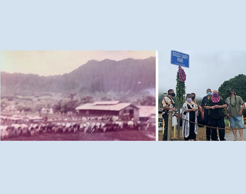 Souza Dairy Park: Making History