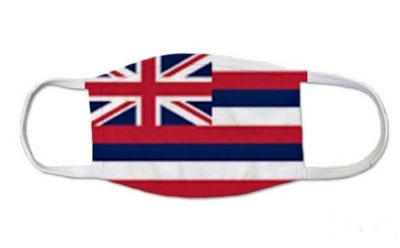 Hawaii returns favor to CDC: Lessons learned